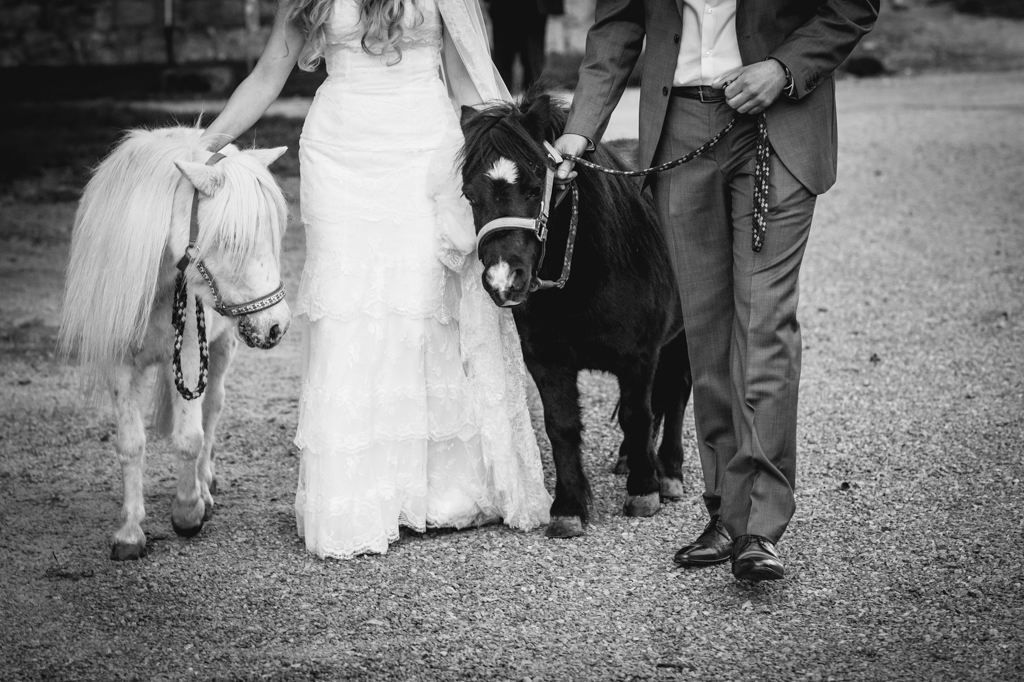 Hochzeits-Fotografie Hofgut Hohenstein Pony