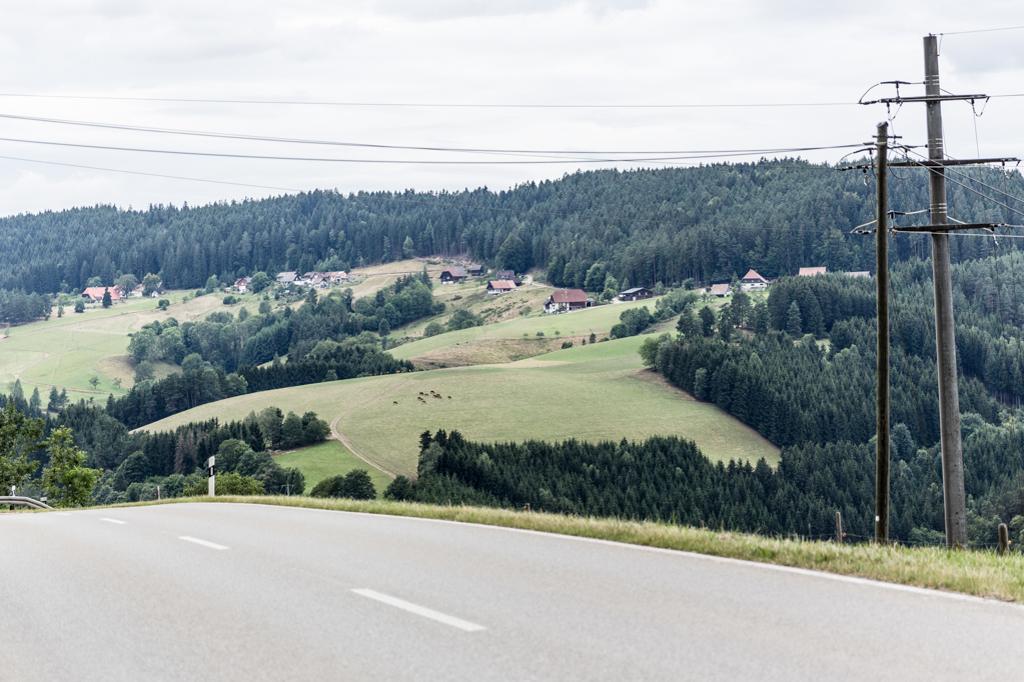 Landschaftsaufnahme Tennenbronn